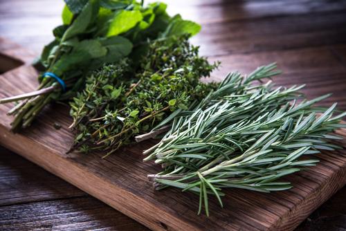 culinary herbs - thyme, rosemary, sage